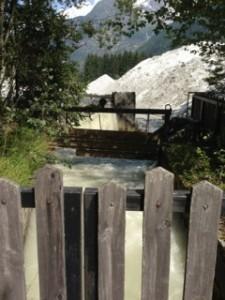 Reiki Healing Path