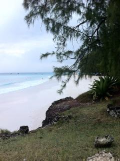 Reiki practice Barbados
