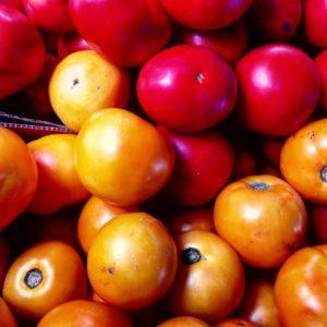 Reiki tomatoes