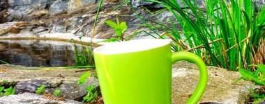 Reiki healing, tea & nature