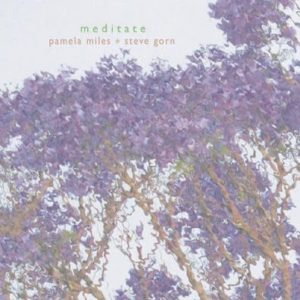 Meditate CD Visual