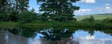 Reiki: Spiritual Practice or Religion