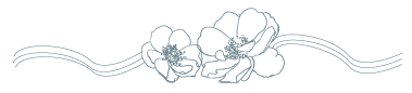 Ornamental Flower Divider, Freedom Week 2020, Pamela Miles, Reiki in Medicine